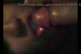 Video xxx lod enimals